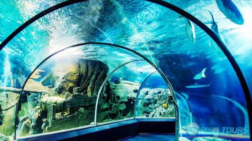 Океанариум в Анталии как добраться